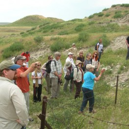Mary Voigt leading the NGS group on a tour of the Gordion Citadel Mound, explaining how the fortifications were rebuilt in the time of King Midas (Middle Phrygian period).