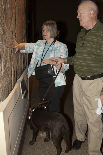 Insights into Ancient Egypt touch tours