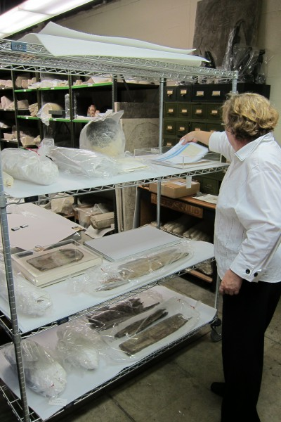 Conservator Lynn Grant preparing a cart of artifacts in Egyptian storage