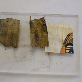 Papyrus samples-aged and unaged