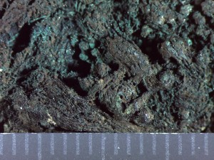 Fiber pseudomorphs on U.14097 (31-17-241).