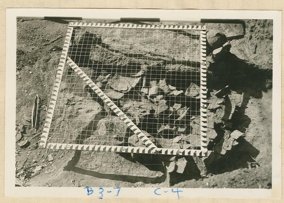 burial3_grid