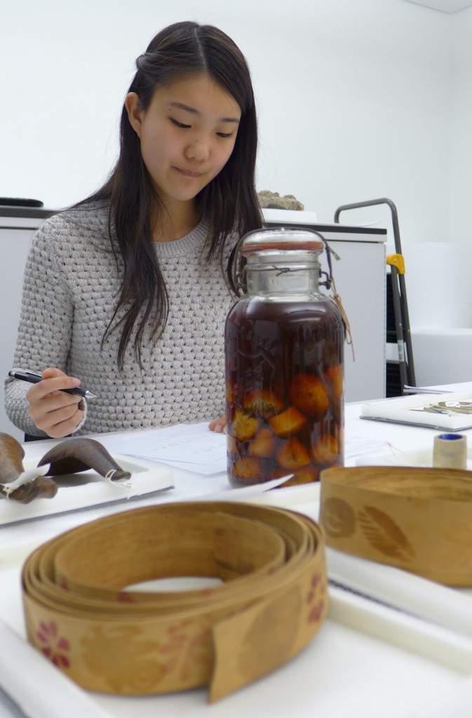 Figure 2. Elizabeth Peng in the Penn Museum Study Lab, with jar of potato stamps and ash splints from River Desert. Photo by Margaret Bruchac.