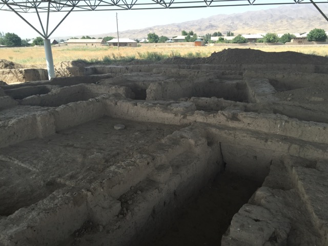 Open but protected excavation trench at Sarazm, showing a building complex constructed from mudbricks. (Photo credit: Author).