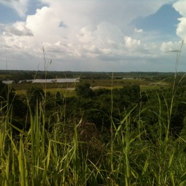 The view from atop one of La Florida's pyramids. Photo by Joanne Baron