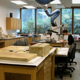 A shot of me working in the archaeological conservation lab at Colonial Williamsburg in 2004
