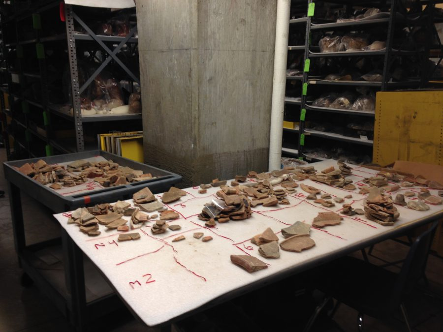 One of the more tedious tasks was sifting through 10,000 pottery sherds from the Maya site of Piedras Negras, Guatemala, excavated by J. Alden Mason and Linton Satterthwaite, Jr., in the 1930s. The team developed a sorting system to assemble finds from specific site locations.