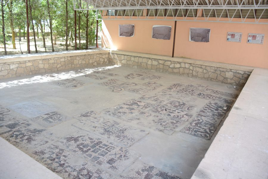 A wide view of the Megaron 2 pebble mosaic.