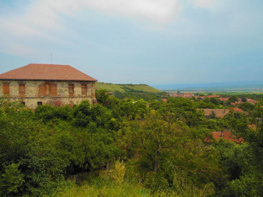 A view of the village of Rapoltu Mare, from the Medieval Hungarian church. Photo by Jordan Rogers.