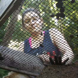 Ashley Terry sifts dirt through a 1/2-inch screen, during the Smith Creek Archaeological Project's 2015 season.