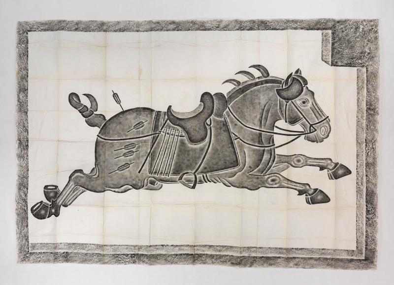 Shifachi the horse running
