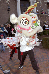 Lion Dancer web