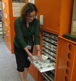 Mediterranean Section Keeper Lynn Makowsky examines an object in storage.