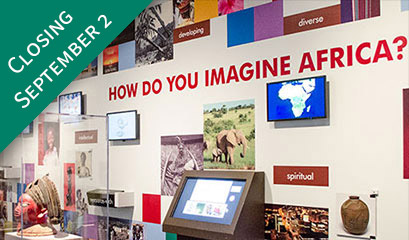 Photo of Imagine Africa Gallery