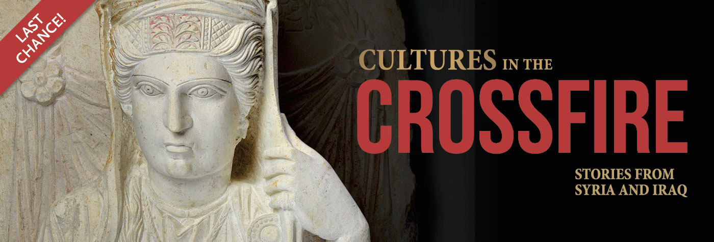 Last Chance to see Cultrues in the Crossfire
