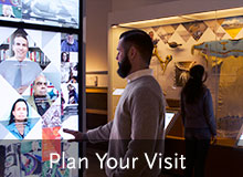 Visit the Penn Museum