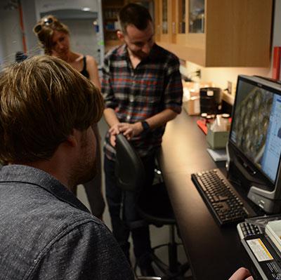 Job: Lecturer in Digital Archaeology