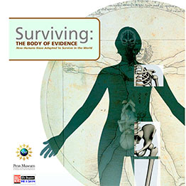 Surviving Exhibition Guide