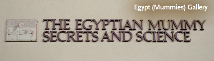 header egyptmummiesgallery1