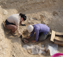 Excavating a burial
