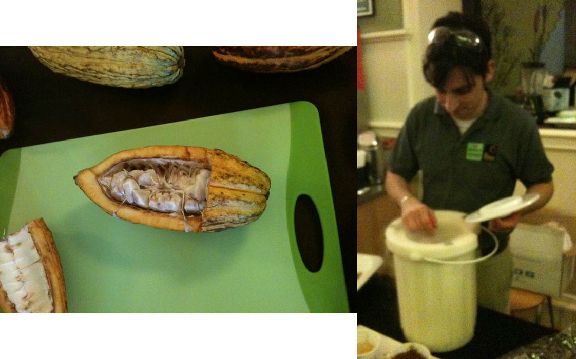 A partially opened cacao pod (left) and the liquid nitrogen-prepared ice cream being served (right)
