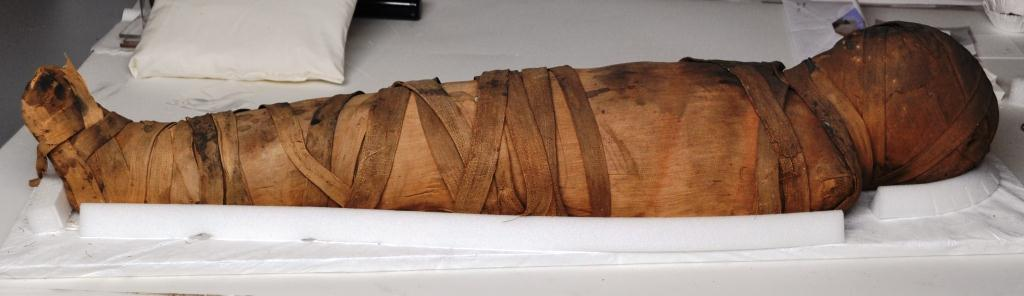 Curious about this mummy? Visit the Artifact Lab to find out more!!