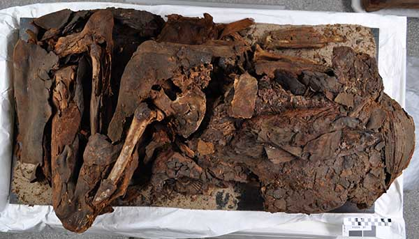 E 16229, a Predynastic mummy.