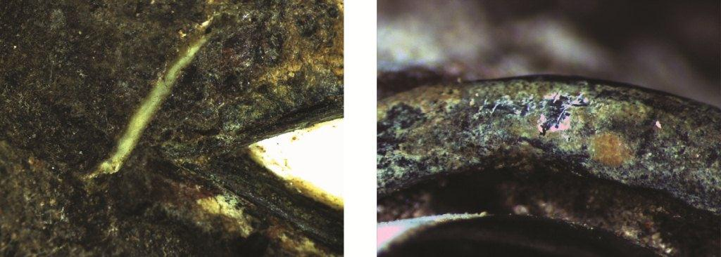 Those deposits cover the eyelids and the polychromy too (magnification x12,5  and x50).