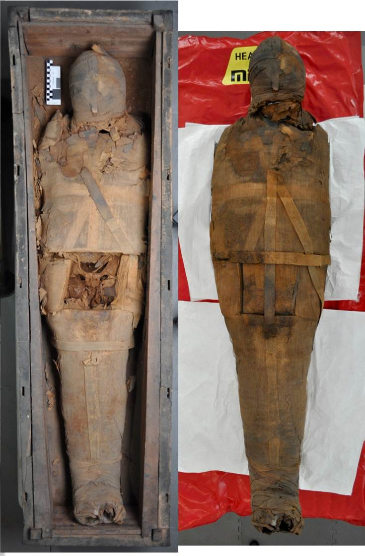 Overall shot of PUM I before and after conservation