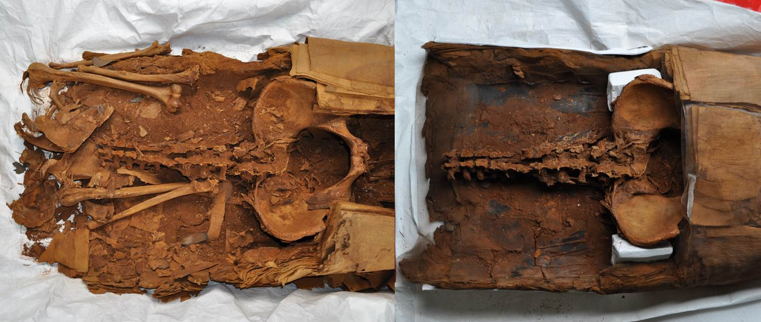 Inside the chest cavity of PUM I before and after conservation