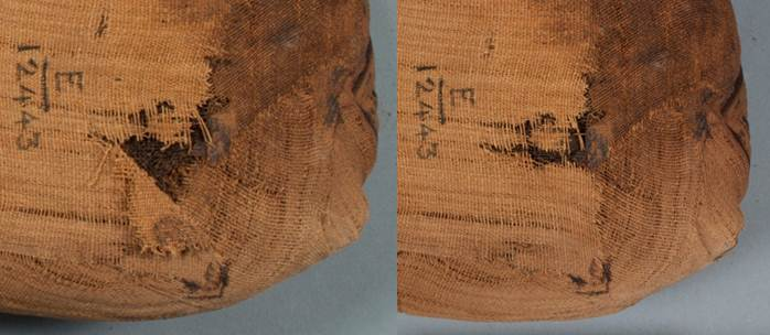 Before (left) and after (right) flattening and readhering the flap of linen on the back of the ibis mummy