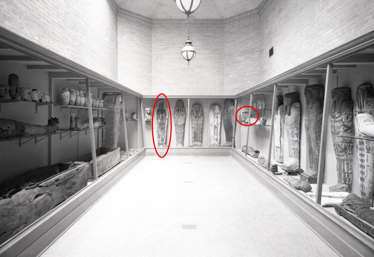 mummy room with coffin and shabtis circled