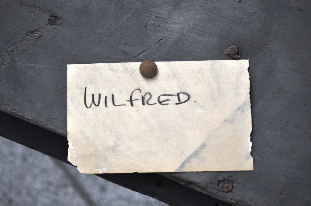 Wilfred label