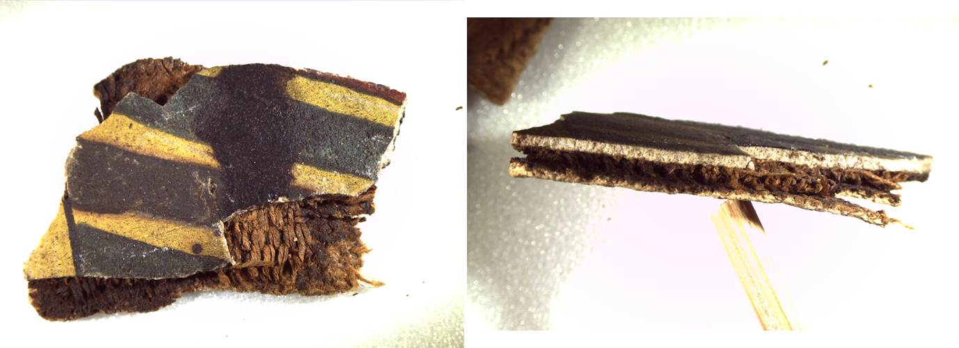 The painted side of one fragment of cartonnage (left) and the same fragment in cross-section (right), 7.5X magnification