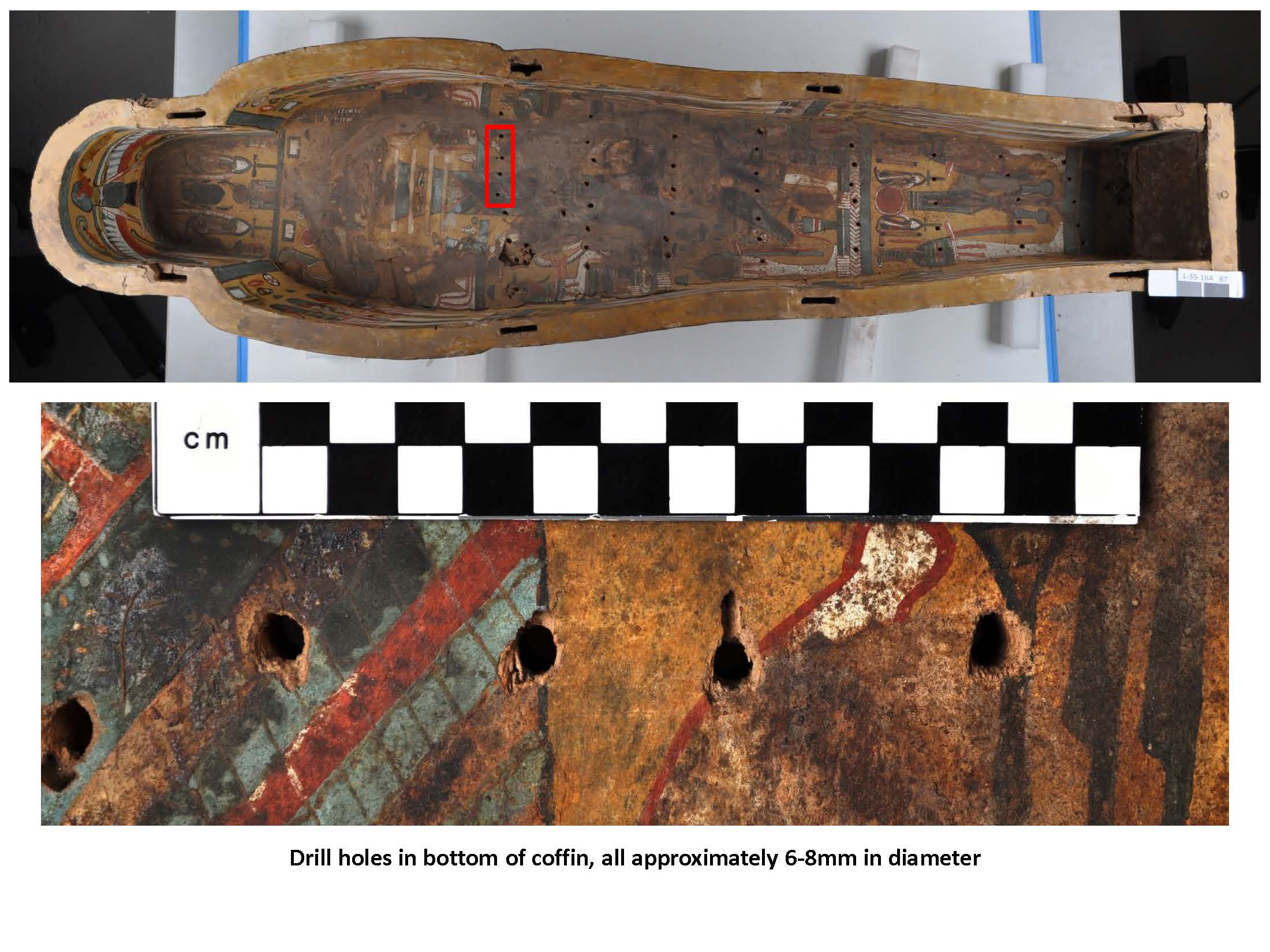 An overall shot of the coffin bottom, with a detail of 4 of the holes below.