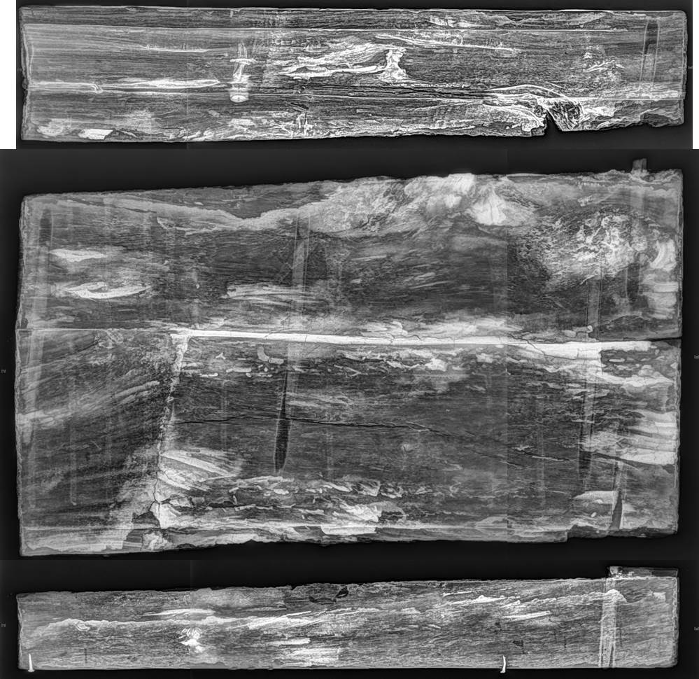E12617A-C x-ray image