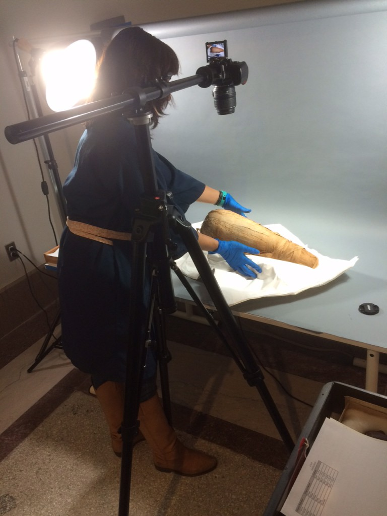 Project conservator Alexis North photographs an ibis mummy in the Artifact Lab.