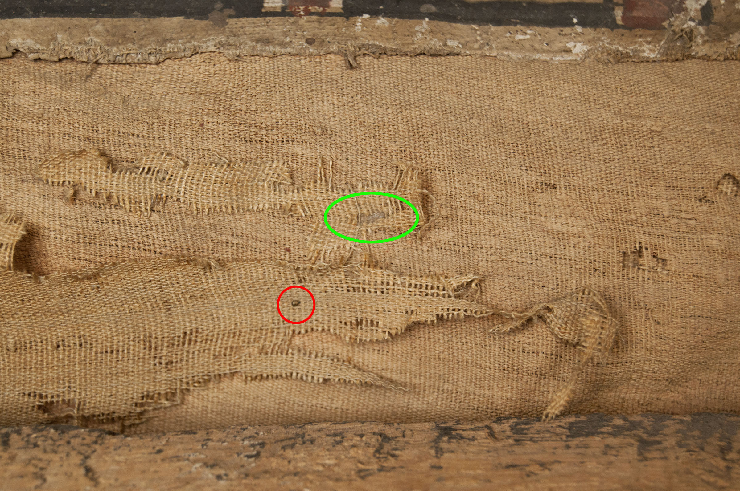 Detail of the linens on the right side of Djed-Hapi's body. The red circle highlights a metal insect pin, and the green oval shows where adhesive was used to reattached broken linen.