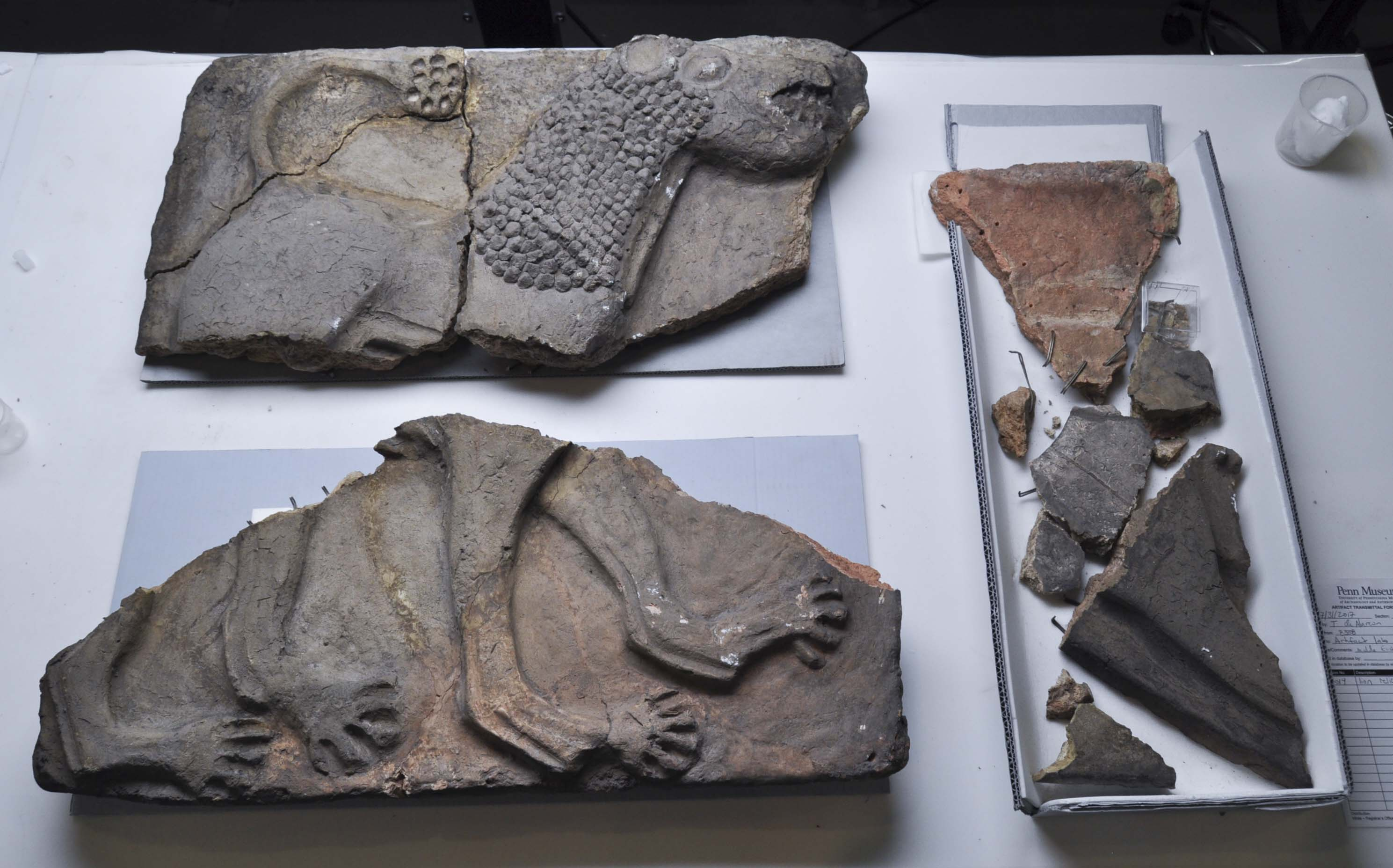 B20014: the lion relief in fragments