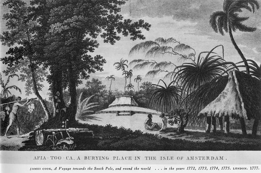 Illustration of island
