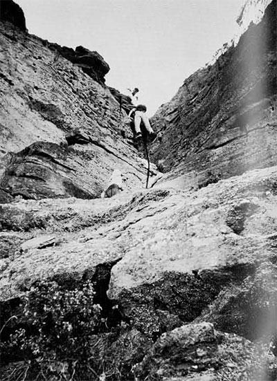 Photo of men climbing