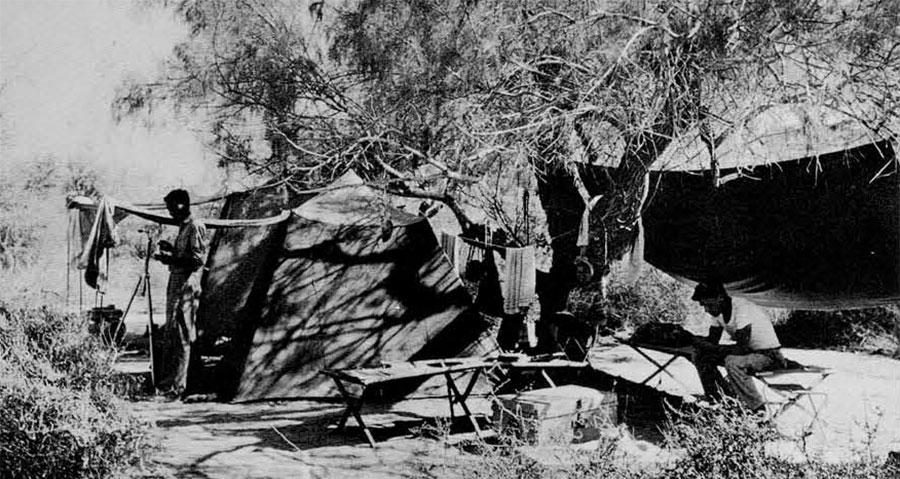 Photo of campsite.