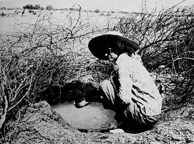 photo of Dales at the water hole.