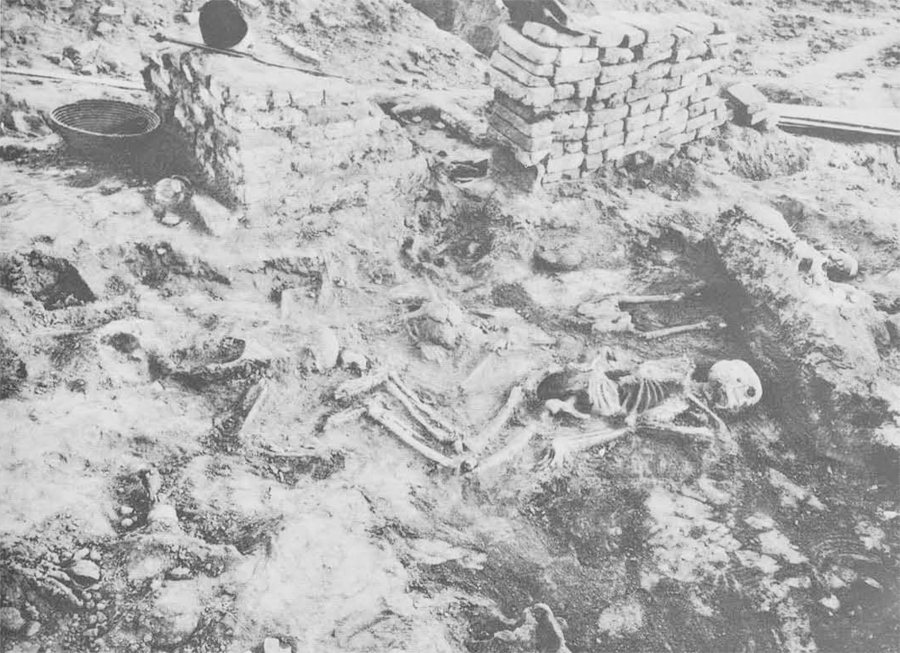 Group of skeletons in Room 74