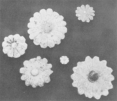 """""""Rosettes"""" of glazed quartz-frit are all perforated on the reverse for attatchment. They vary in size from 2 1/2 to 1/4 inch and the petals are glazed on yellow, blue, and light green. One center is of black glaze."""