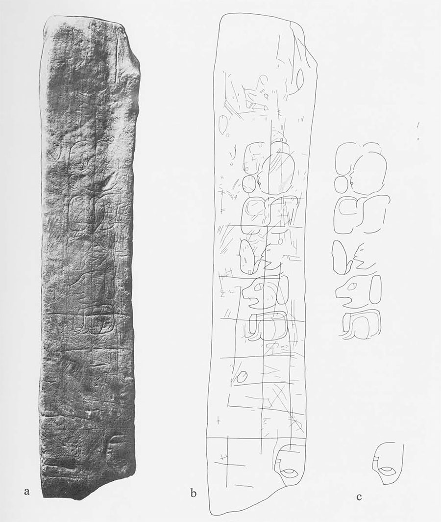 "Fig. 2. Surface 1 of Miscellaneous Sculptured Stone 8, ""MSS-8(1)"", Piedras Negras: photograph (a) and drawings of selected details (b,c). Stone is from collapsed interior wall of vault masonry of palace Structure J-9. Acropolis Court 2. Note unfinished hieroglyphs, stylized human(?) face, grid lines, ""doodle"" lines. Excavated 1935. Surface 1 measures 46 x 9cm. (ca 18 x 3 1/2 inches)."