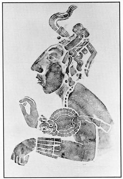 Classic Maya Rubbings | Expedition Magazine