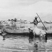 Photo of man with cattle in lake