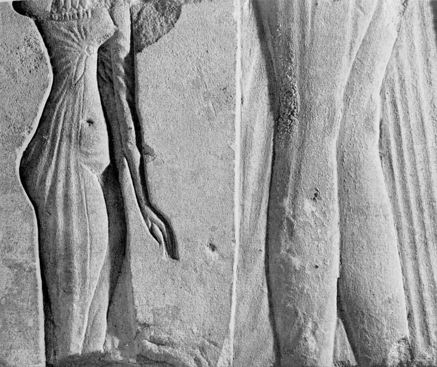 a study on the life of akhenanton The frail boy needed a cane to walk, had history's earliest genetically proven case of malaria, and was sired by siblings, says a new dna study of king tut and relatives.