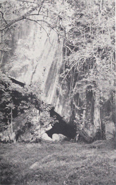 The eastern entrance to Yengema Cave showing the huge slab of fallen rock that roofs the enclosure.